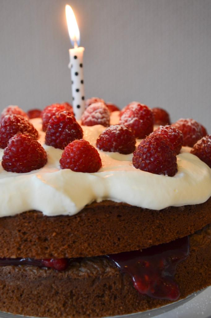 schokolade_himbeer_torte_2